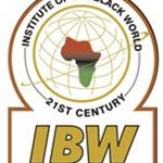 Institute of the Black World image