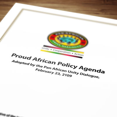 Proud African Policy Agenda