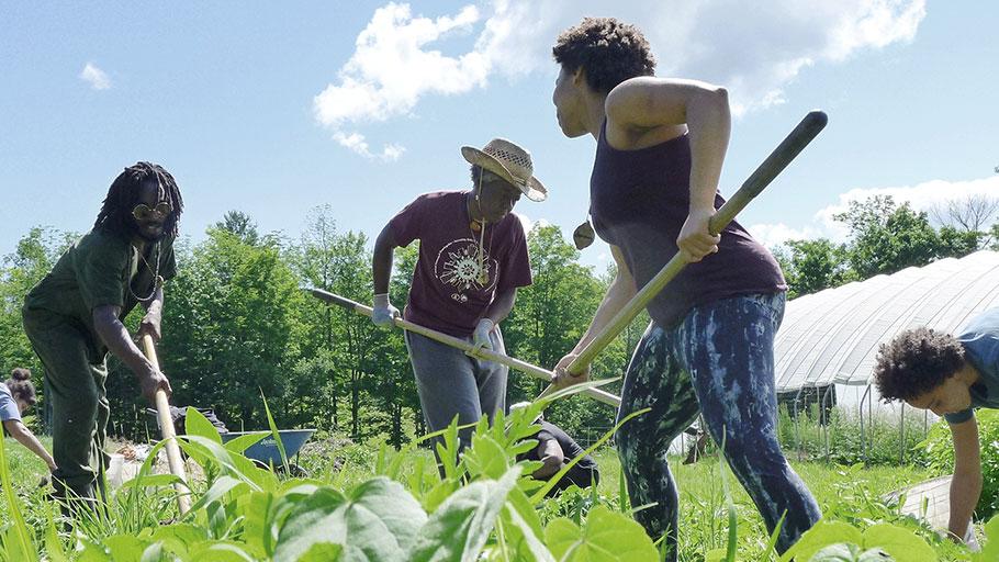 Participants in Soul Fire Farm's Black Latinx Farmers Immersion program prepare a bed for planting.