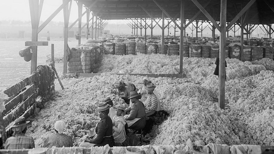 Cotton and Slaves