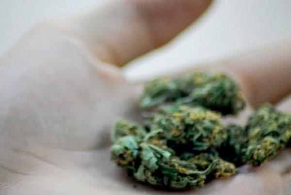 Impact of war on drugs on minorities reveals hypocrisy, racism of legalized marijuana industry
