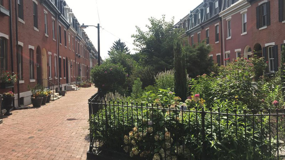 Garden blocks like this one on St. Albans Street are a distinguishing feature of the Graduate Hospital neighborhood.