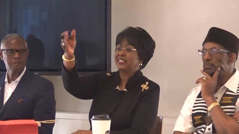 Dr. Arikana Chihombori-Quao, Pan-African Unity Dialogue in New York