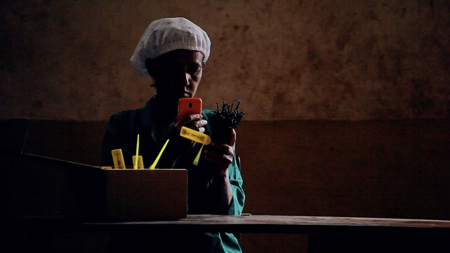 A worker scans the QR code on a bundle of vanilla pods in Madagascar.