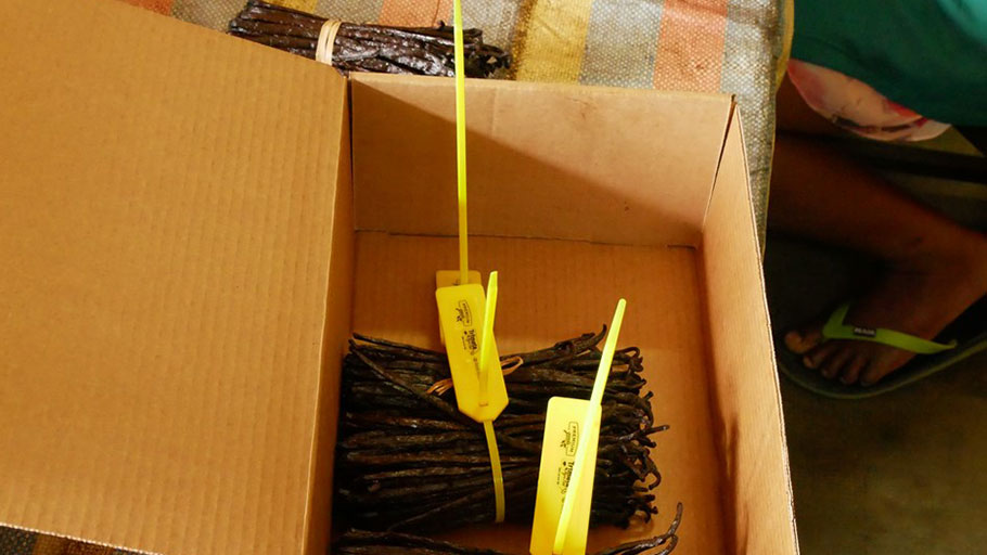 Bundles of vanilla pods with QR codes that can be scanned to digitize the supply chain.