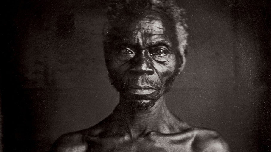 Harvard University Sued Over Earliest Photos of American Slaves