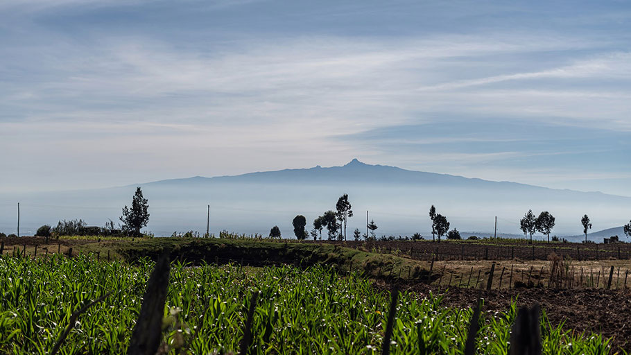 Mount Kenya peeks out from the clouds beyond a garlic farm in Embaringo, Kenya