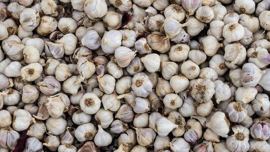 Garlic is heaped on a mat beside a roadside stall in Kiawara, Kenya