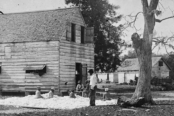 Formerly enslaved people preparing cotton for the gin on Smith's plantation, Port Royal Island, South Carolina, 1861–1862