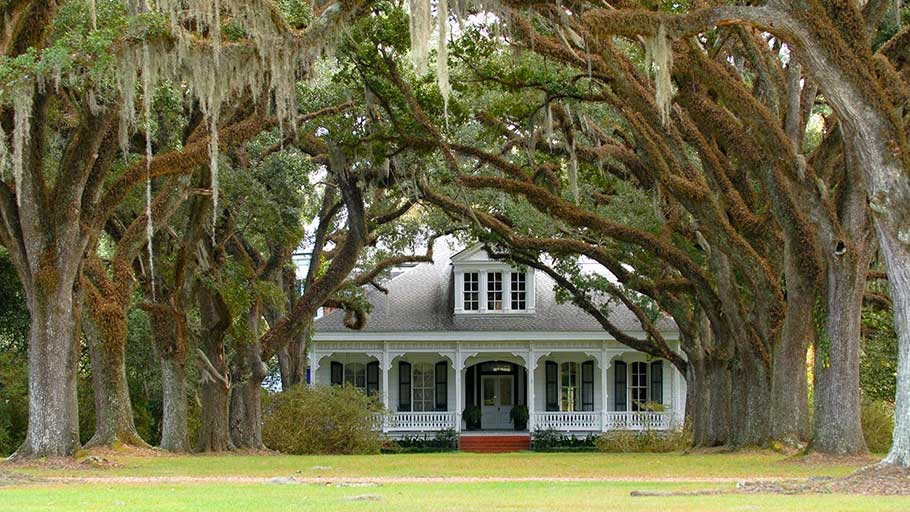 Aesthetically, the antebellum plantations of the Old South are undeniably beautiful. But they're built on human degradation.