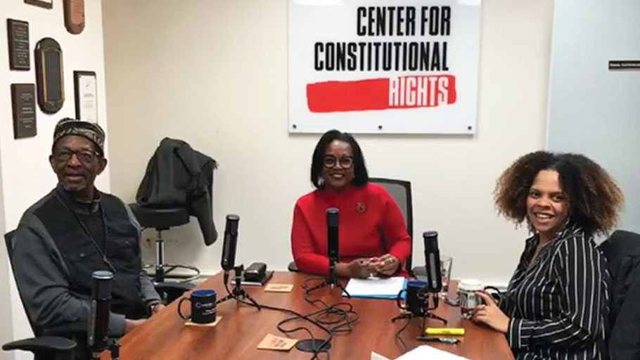 The Activist Files Podcast Episode 22: Restitution and repair - a discussion on Black reparations with Dr. Ron Daniels and Marbre Stahly-Butts
