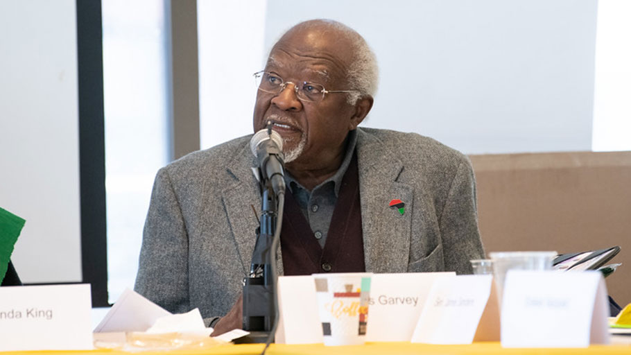 Dr. Julius Garvey - February 22, 2020 IBW21 Pan African Unity Dialogue (PAUD) Meeting.