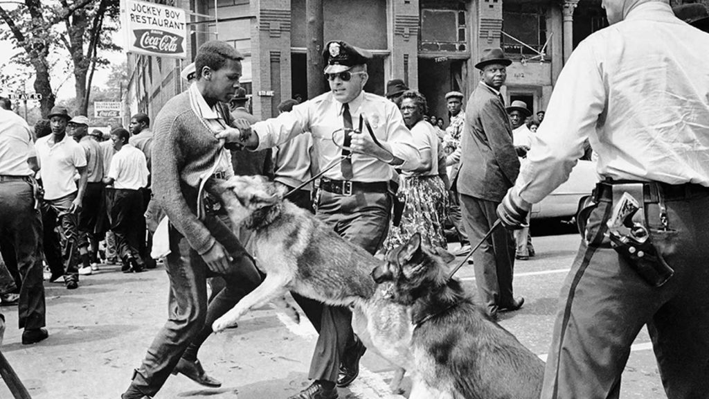 Police dog attacking man - Civil Rights Movement 1960s
