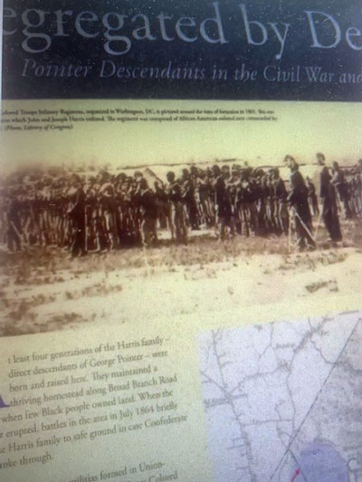 Segregation By Design: Pointer Descendants in the Civil War and Today.